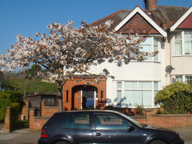 Avondale Avenue, West Finchley, London, N12 8EN